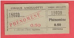 TICKET ENTREE CIRQUE ANCILLOTTI PHENOMENE - Tickets D'entrée