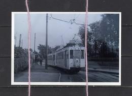 PHOTO TRAM EXPO 1958 LIGNE M DILBEEK  REPRO - Strassenbahnen