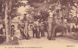 Asie - Hué - Promenade Des Elephants Du Roi - Cartes Postales