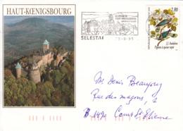 France Flamme De Sélestat Château Du Haut-Koeningsbourg Sur Enveloppe Thématique 25-9-95 - Marcofilia (sobres)
