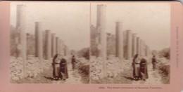 STEREO PHOTO  KILBURN YEAR 1899 / PALESTINE / THE GREAT COLONNADE OF SAMARIA - Palestine