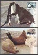 AUSTRALIE AAT 1992 5 MAXICARDS Faune I - Maximumkarten