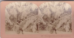 STEREO PHOTO  KILBURN YEAR 1900 / THIRTY DEGREES BELOW ZERO AND NIGHT IS COMING - Photos Stéréoscopiques