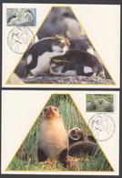 AUSTRALIE AAT 1993 3 MAXICARDS Faune II - Maximumkarten