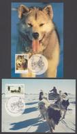AUSTRALIE AAT 1994 4 MAXICARDS Attelages De Chiens De Traineau - Maximumkarten