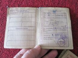 RARE CARTE DE RATIONNEMENT AVEC SES TICKETS 1946 DEPARTEMENT HAUTE-SAVOIE Au Nom De JON Eugénie De La Lampe - Alimentos