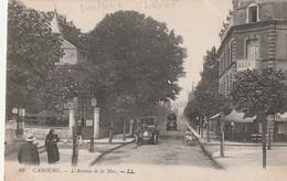 14 Cabour. L'Avenue De La Mer - Cabourg