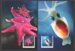 AUSTRALIE AAT 2017 4 MAXICARDS Deep Sea Creatures - Maximumkarten