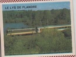 France Boite D'allumettes SEITA Pleine - SNCF Train Le Lys De Flandre - Matchboxes