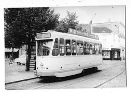 VILVOORDE (Belgique)  Photographie Tramway électrique Gros Plan Vers 1950 - Vilvoorde