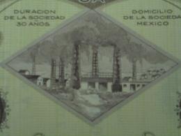 MEXIQUE - MEXICO 1929 - LOT DE 5 TITRES - CIE MEXICANA DE PETROLEO - TITRE DE 1 ACTION DE 500 $ - BELLE VIGNETTE - Shareholdings