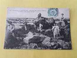 CPA -17- 16 - ENVIRONS DE LA ROCHELLE  ANGOULINS  - PECHEURS D'HUITRES AUX ROCHES DE LA MOTHE-GRENET - France