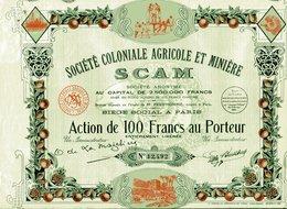 SCAM - Société Coloniale Agricole Et Minière - Afrique