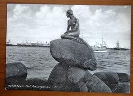 DANIMARCA Copenhagen Langelinie Cartolina   Viaggiata - Danimarca