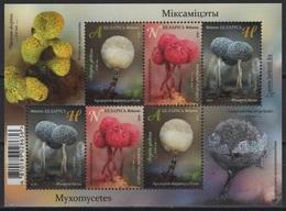 Belarus (2020) - MS -  /  Setas - Pilze - Mushrooms - Champignons - Fungi - Cogumelos - Funghi - Champignons