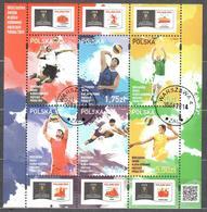 Poland 2014 - Volleyball Men's World Championships - Mi Ms 232 - Used - Blocks & Kleinbögen