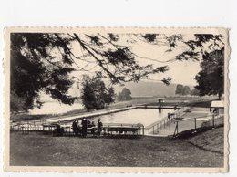 1 - SOUMAGNE - Domaine De WéGIMONT - Le Bassin De Natation - Soumagne