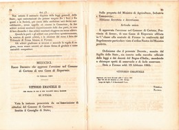 CORTONA - AREZZO - VITTORIO EMANUELE II° APPROVA L'EREZIONE DI UNA CASSA DI RISPARMIO - 19 FEBBRAIO 1965 - Decrees & Laws