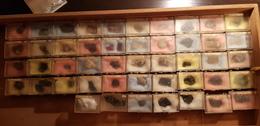 Collection Minéralogie Privée - Minéraux