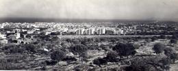 Catania - Panorama - Formato Lungo Non Viaggiata -  Bozza – E 16 - Catania
