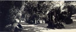 Catania - Villa Bellini - Viale Degli Uomini Illustri - Formato Lungo Non Viaggiata - Bozza – E 16 - Catania