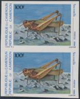 CAMEROUN (1986) Grasshopper. Imperforate Pair. Scott No 809, Yvert No 784. - Camerun (1960-...)