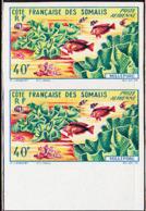 SOMALI COAST (1963) Millepore Coral. Imperforate Pair. Scott No C26, Yvert No PA34. - French Somali Coast (1894-1967)