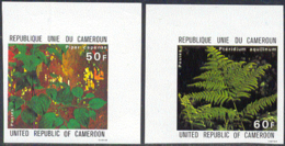 CAMEROUN (1979) Medicinal Plants: Piper Capense, Pteridium Aquilinum. Set Of 2 Imperforates. Scott Nos 665-6 - Camerun (1960-...)
