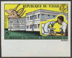 CHAD (1972) Cattle. Microscope. Farcha Veterinary Laboratory. Imperforate. Scott No C142, Yvert No PA127. - Tschad (1960-...)