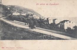 OSPEDALETTI-IMPERIA-UN SALUTO DA-CARTOLINA NON VIAGGIATA -ANNO 1900-1904 - Imperia