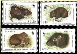 Jamaica 1996 Jamaican Hutia - Rodent WWF Set Of 4 MNH - Jamaica (1962-...)