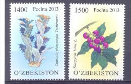 2013. Uzbekistan, Flora, Rare Plants, 2v, Mint/** - Usbekistan