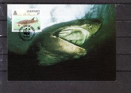 (Cl.B.) - Guernsey - Requin Pélerin - Other