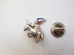 Superbe Pin's En Relief , Armée Militaire , CNC , Flamme Tricolore , FN ?? , Parti Politique ?? - Armee