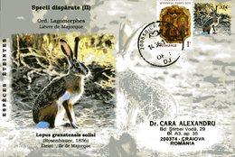 Envelope Speciale, 2011, Roumanie, Especes Eteintes, Lepus Granatensis Solisi, Lievre De Majorque - Stamps