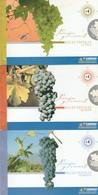 Argentine 2006 Vin Raisin Lot 3 Carnets Neufs Argentina 2006 Wine Grappe Set Of 3 Booklets Mint - Vini E Alcolici