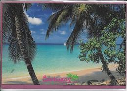 PARADISE FOUND BARBADOS - Barbados