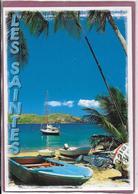 ANTILLES FRANÇAISE TERRE DE HAUT  PLAGE DU BOURG - Barbados