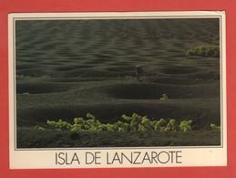 CP EUROPE ESPAGNE LANZAROTE 313 - Lanzarote