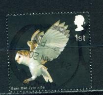GREAT BRITAIN  -  2003 Birds Of Prey 1st Used As Scan - Gebruikt