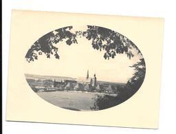 54 - ART SUR MEURTHE : Photo Chartreuse De Bosserville Février 1934 - Places