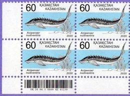 Kazakhstan 2020. Definitive Issue. Fauna. Red Book Of Kazakhstan. Fish. Acipenser Nudiventris. MNH** - Kazakhstan