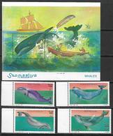 Somalia 1999 Whales MNH - Somalia (1960-...)