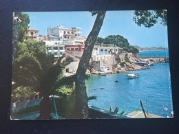 PALMA DE MALLORCA. LA PORTASSA.AÑO 1964. - Mallorca