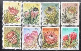 RSA  - (o) Used - Ref 12 - 1977 - Protea - África Del Sur (1961-...)