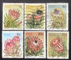 RSA  - (o) Used - Ref 12 - 1977 - Protea - Afrique Du Sud (1961-...)