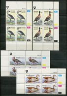 Venda Mi# 150-3 Zylinderblöcke Postfrisch/MNH Controls - Fauna Birds - Venda