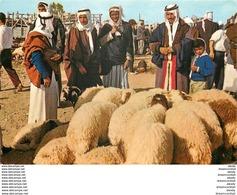 Photo Cpsm Cpm Palestine Israël 1975 - Palestine