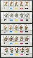 Venda Mi# 1-17 Zylinderstreifen Postfrisch/MNH Controls - Flora Flowers - Venda
