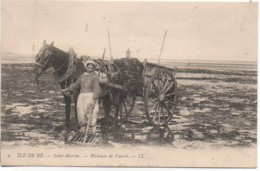 17 ILE De RE   SAINT-MARTIN  - Pêcheuse De Varech - Ile De Ré